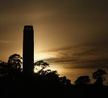 Coit Tower at sunset by fototaker