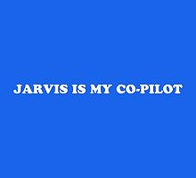Jarvis is my co-pilot by NotNowJordan