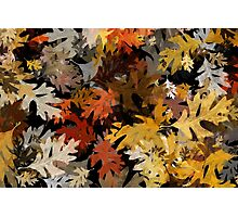 Oak Leaf Abstract Photographic Print