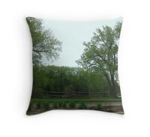 Drive By Landscape Throw Pillow