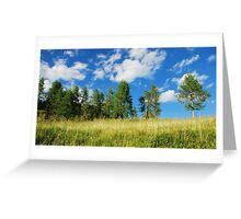 Trees with Cumulus Fractus 1 Greeting Card