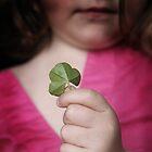 Four leaf clover by Sarah Crowe