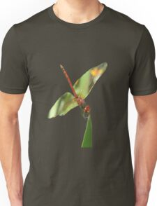 Red Skimmer or Firecracker Dragonfly Isolated Unisex T-Shirt