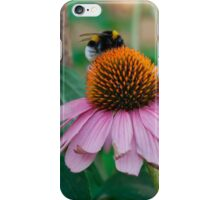 Echinacea Purpurea with Bees 1 iPhone Case/Skin
