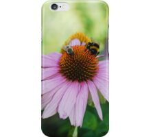 Echinacea Purpurea with Bees 2 iPhone Case/Skin