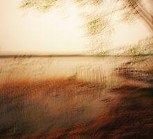 Artscape...........Lake near Berlin by Imi Koetz