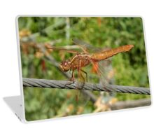 Female Red Skimmer Dragonfly  Laptop Skin