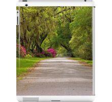 Magnolia Plantation Driveway iPad Case/Skin