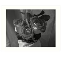 Roses in Shadow & Light (3) Art Print