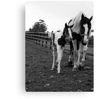 Always by her side.. Canvas Print