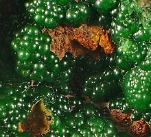 Conichalcite on Carbonate by Christopher Carlson