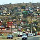 Guanaquero, Chile by Daniela Weil