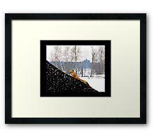 Fox Trot 1 Framed Print