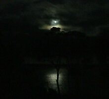 moonlight Eaglehawk Neck by rosalind