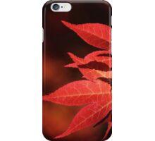 Blazing Glory iPhone Case/Skin