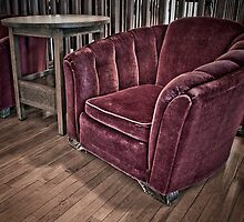 Velvet Chair by Myron Watamaniuk