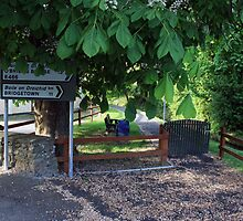 Irish signposts by John Quinn