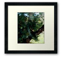 Tree Elf DMT Framed Print