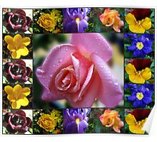 Mixed Flowers Collage Featuring Pink Rose Poster