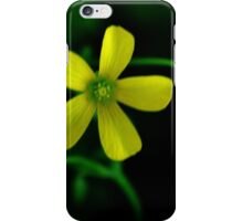Size Does Not Matter iPhone Case/Skin
