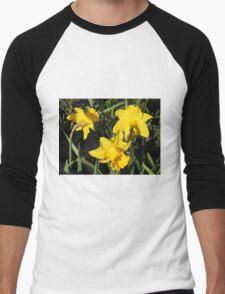Daffodils Dreaming Men's Baseball ¾ T-Shirt