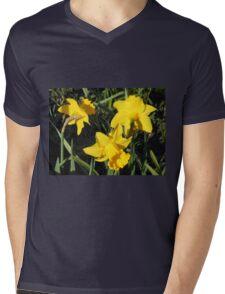 Daffodils Dreaming Mens V-Neck T-Shirt