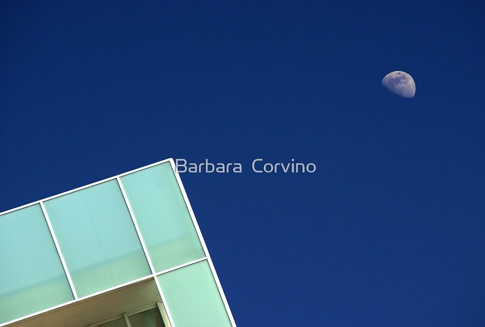 /\ ° by Barbara  Corvino