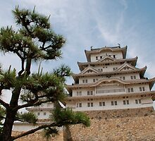 Himeji Castle With Tree, Kansai by jojobob