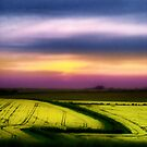 Dorset Sunset Onset by A90Six