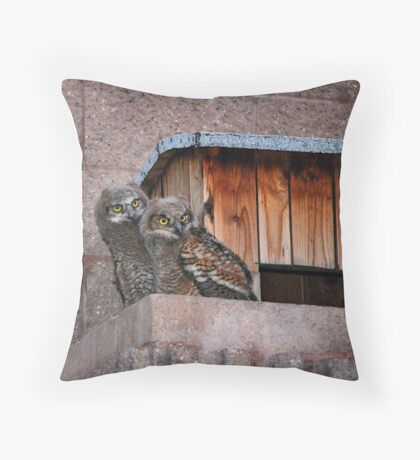Huddled in the Corner Throw Pillow