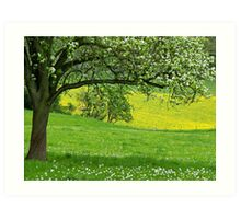 Spring in Voeren Art Print