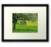 Spring in Voeren Framed Print