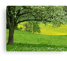 Spring in Voeren Canvas Print