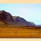 Moses Coulee by Fotography by Felisa ~