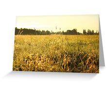 Field Greeting Card