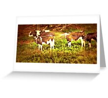 """""""Buttercup Shows Off Her Shiny New Earrings""""... prints and products Greeting Card"""