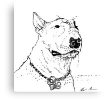 Bullterrier Canvas Print