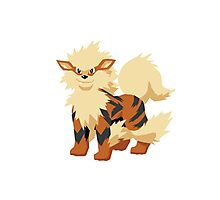 Arcanine Pokemon Simple No Borders Photographic Print