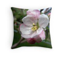 Apple Blossum Throw Pillow