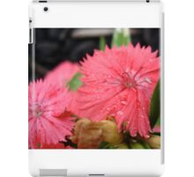 Flowers Dressed in Pink iPad Case/Skin