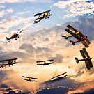 Tiger Moth Ballet by Chris Lord