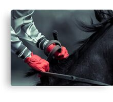 Frozen Races II Canvas Print