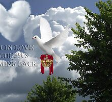 I'M IN LOVE-WITH JESUS COMING BACK-AWAITING JESUS RETURN..DOVE CROWN ROBE CHRISTIAN PICTURE,POSTER,PRINTS ECT... by ✿✿ Bonita ✿✿ ђєℓℓσ