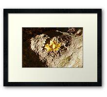 Heart Rock Framed Print