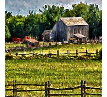Country Fences Photographic Print