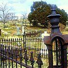 "Virginia City Cemetery"" by Lynn Bawden"