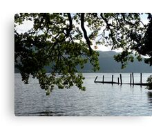Foliage above the water Canvas Print