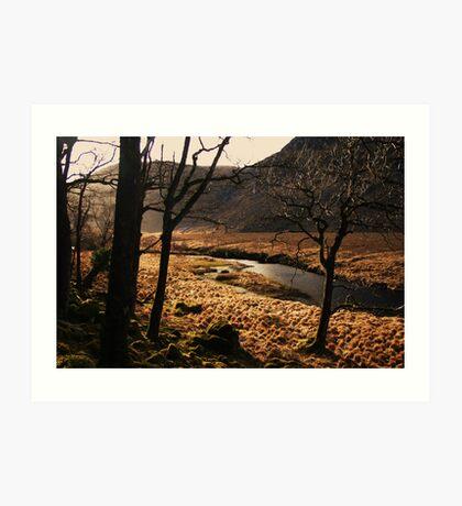 A walk in Donegal Art Print
