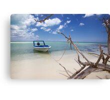 Cozumel, Mexico - Drift Away Canvas Print