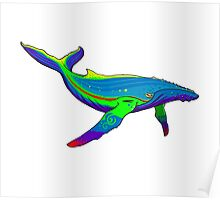 Rainbow Whale Poster